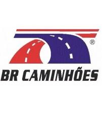 Bolsa De Ar Cabine C/ Amortecedor Tras. Iveco Eurotech 2004